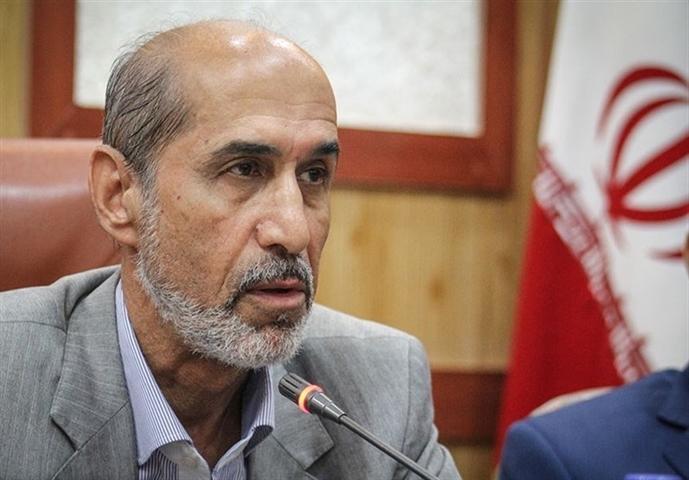 شهرستان دشتی ظرفیت تبدیل شدن به شهر ملی صنایع دستی را دارد