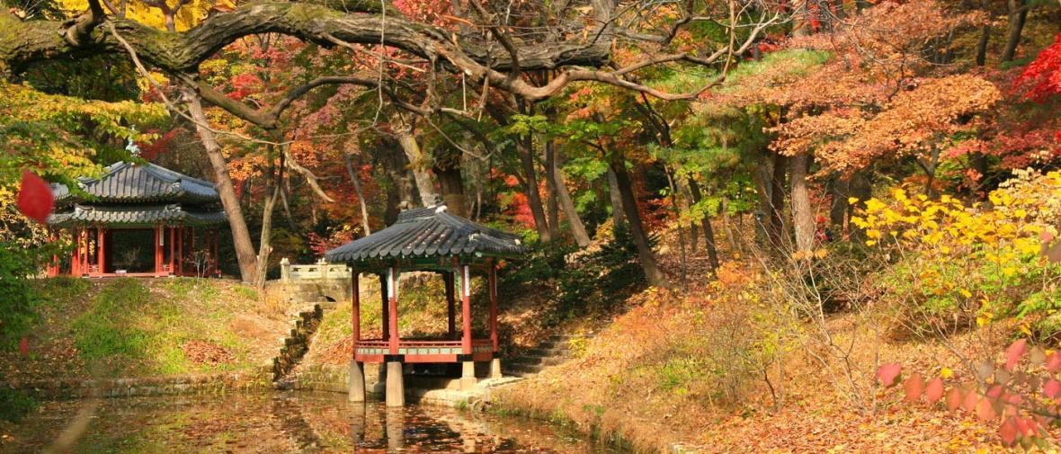 3 جایی که باید در کره جنوبی ببینید