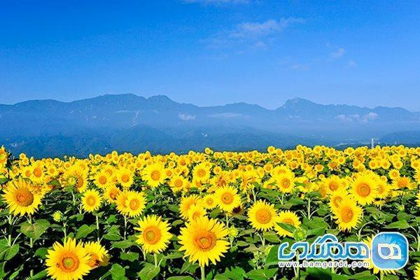 بهترین جاهای دیدنی ژاپن در تابستان را بشناسیم