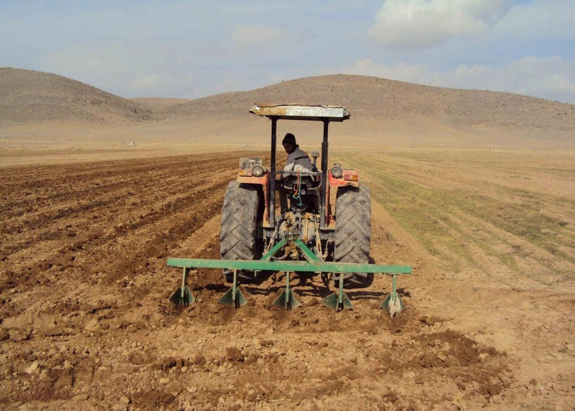 خبرنگاران 13 هزار تن بذر اصلاح شده غلات در خراسان شمالی توزیع شد