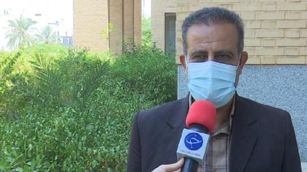 60 هزار تن گندم از مزارع استان بوشهر برداشت می گردد